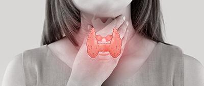 Check Schilddrüsenhormone